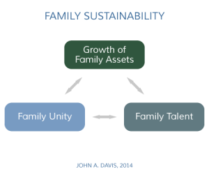 Family Enterprise Sustainability